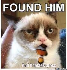 Grumpy Cat Is Not Amused by grimboy - Meme Center via Relatably.com
