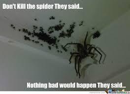 Dear Rabbit - Spider Senses by raze - Meme Center via Relatably.com