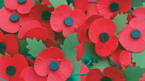 Image result for poppy appeal