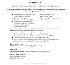 resume sas programmer resume sas programmer resume printable