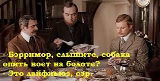 """Призываю коллег Сущенко задать вопросы о его судьбе Путину завтра на встрече в """"нормандском формате"""", - Фейгин - Цензор.НЕТ 9239"""