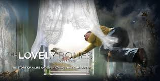 a review of alice sebold s novel the lovely bones