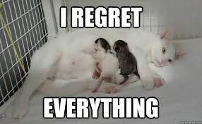 I regret Everything - Remorseful Mother - quickmeme via Relatably.com