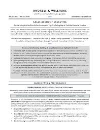 Technical Sales Resume   Executive resume writer for IT Leaders