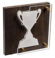 <b>Награда Celebration</b>, <b>кубок</b> купить, цена в Санкт-Петербурге
