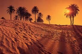 Hasil gambar untuk padang pasir