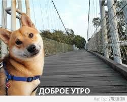 Bildergebnis für Доброе Утро pics in russian