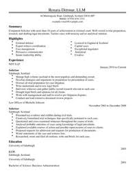 Professional Word Templates  cv format in word  it cv template cv     Professional CV Writing Services