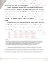 montaigne essay on friendship  essay formats sample art history thesis statement