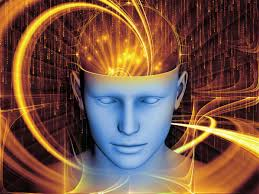 Image result for free images of brain