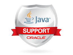 Graphic showing Java Support Oracle