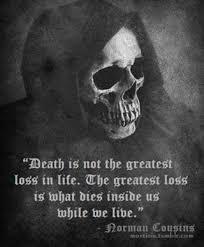 Cousins Quotes For Dead. QuotesGram