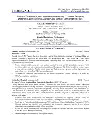 nursing resume nurse resume examples nursing resume sample 07