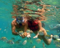 Image result for things to do in punta cana