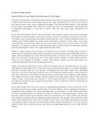 example of good essay writing frudgereport web fc com example of good essay writing