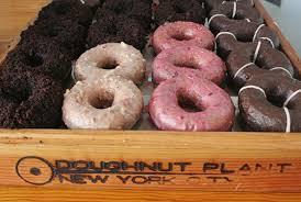 """Résultat de recherche d'images pour """"doughnut plant"""""""