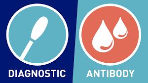 Coronavirus Disease 2019 Testing Basics   FDA