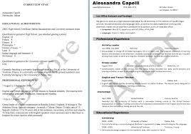 cover letter and cv résumé writing babble on writing translation resume editing example by benjamin zadik