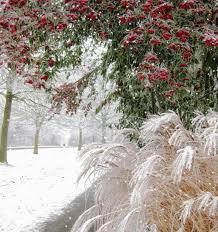 """Résultat de recherche d'images pour """"gif de l'hiver"""""""