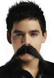 Image result for david archuleta with beard