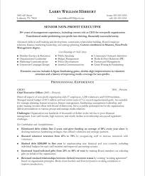 non profit executive page1 sample resume executive