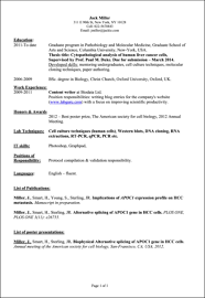 a list of professional skills professional skills resume section list of professional skills for resume resume sample skills list how to write your computer skills