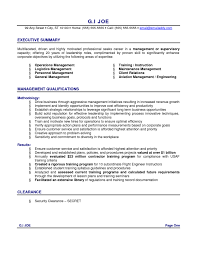 c level resume samples RSVPaint Sample resume format for purchase executive   RSVPaint