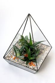 Флорариум <b>Пирамида</b> с миксом кактусов и суккулентов, высота ...