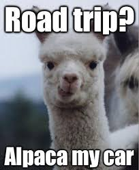 Image result for memes traveling with kids