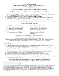 auto sales resume templates salesperson sales resume resume resume auto sales resume
