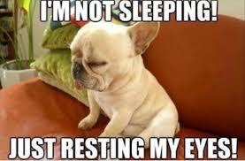 FunniestMemes.com - Funny Memes - [I'm Not Sleeping Just Resting ... via Relatably.com