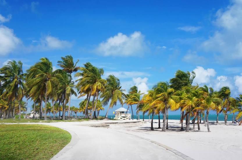 Shell Contractors Miami Beach