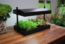 Kitchen Herb Garden Design Apartment Plants Outdoor Creative Ideas For Home Garden Bedroom