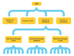 bbc   gcse bitesize  structuring a businessan organisational chart showing the structure of a company  starting   the ceo at the