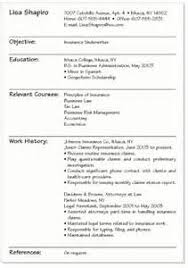 best resume writing service      miami   writing a resume format     Best Resume Writing Service
