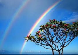 We Were God Victorious..by Patricia Diane..The Latest News Images?q=tbn:ANd9GcT4cxwOuZkGAUW2QyGTYv4u6YO_ZTyDG70W56c_2xNbtImTdWJxfg