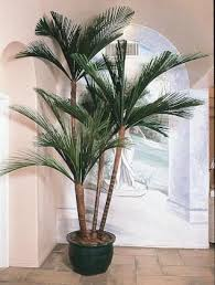 artificial plants caribbean and palms on pinterest artificial plants for office decor