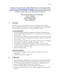 mis resume sample vice president resume examples samples mis mis resume sample for manager