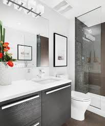bathroom ideas bathrooms amazing