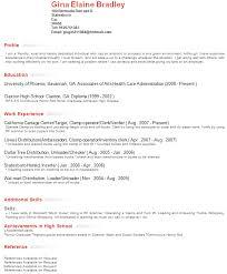resume profile examples  profile on resume examples  professional    resume profile section examples