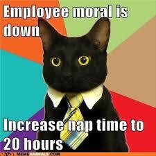 Funny Memes - 42 Pics via Relatably.com