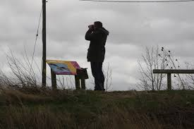 Image result for Bird watchers