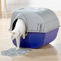 cats like their privacy arena kitty litter box