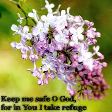 Image result for spring verses quotes