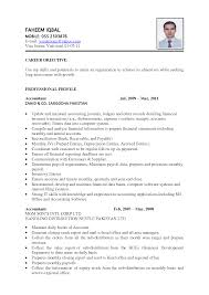 format example of a great resume  best sample of great resume    great