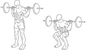 image squat