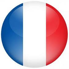 """Résultat de recherche d'images pour """"drapeau france flottant"""""""