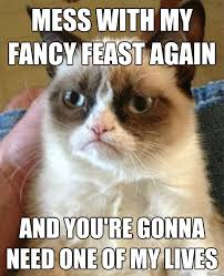 Best Of The Grumpy Cat Meme | WeKnowMemes via Relatably.com