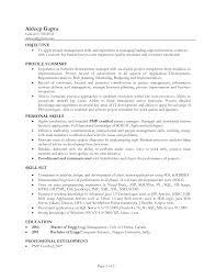 resume  examples of profile summary  corezume cocv profile