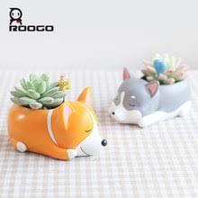 <b>Roogo Flower Pot</b>